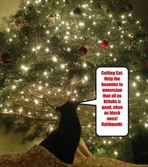 Ceiling Cat. Help the hoomins to unnerstan that all us kittehs iz good, eben us black ones! Kaithanxbi.
