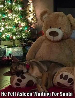 He Fell Asleep Waiting For Santa