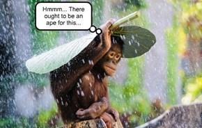 Technology is ape-pervasive...