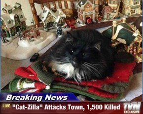 """Breaking News - """"Cat-Zilla"""" Attacks Town, 1,500 Killed"""