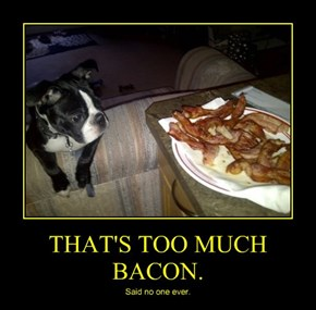 THAT'S TOO MUCH BACON.