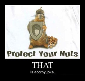 Squirrels Care About Protection