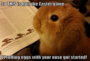 So THIS is how the Easter game  Of rolling eggs with your nose got started!