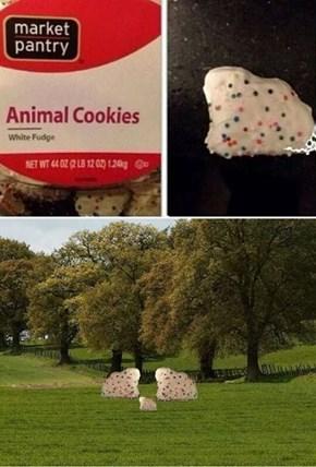 Such Majestic Biscuit Creatures