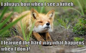 I always bow when I see a kitteh.  I learned the hard way what happens when I don't!