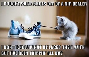 I BOUGHT SOME SHOES OFF OF A NIP DEALER  I DON'T KNOW WHAT HE LACED THEM WITH BUT I'VE BEEN TRIPPIN' ALL DAY