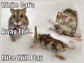 While Cat's Away The Mice Will Play