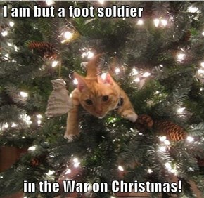 I am but a foot soldier  in the War on Christmas!