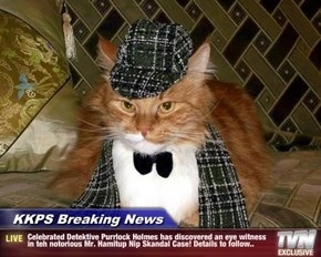 KKPS Breaking News - Celebrated Detektive Purrlock Holmes has discovered an eye witness in teh notorious Mr. Hamitup Nip Skandal Case! Details to follow..