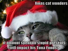 Xmas cat wonders  if amount spent on stupid presents will impact his Tuna Funds?