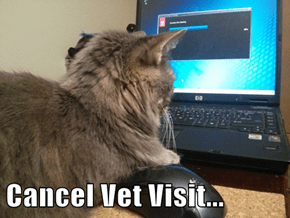 Cancel Vet Visit...