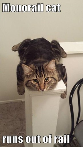 Monorail cat  runs out of rail