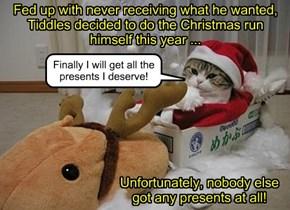 """Do it Yourself"" Christmas!"