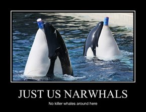 JUST US NARWHALS