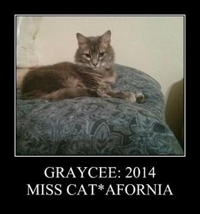 GRAYCEE: 2014 MISS CAT*AFORNIA