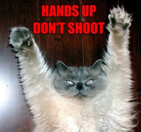 HANDS UP.. DON'T SHOOT