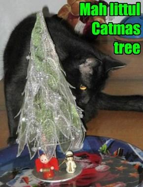Mah littul  Catmas  tree