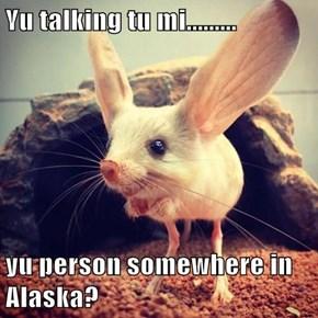 Yu talking tu mi.........  yu person somewhere in Alaska?
