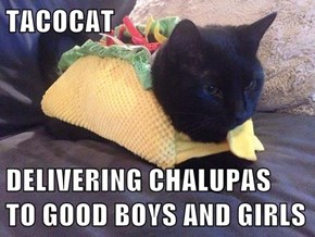 TACOCAT  DELIVERING CHALUPAS                 TO GOOD BOYS AND GIRLS