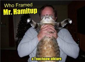 Who Framed Mr. Hamitup