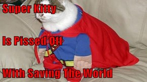 Super Kitty Is Pissed Off With Saving The World