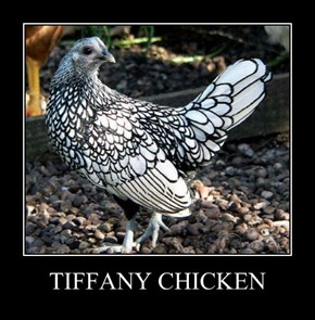 TIFFANY CHICKEN