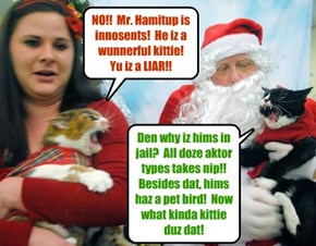 Eben in teh Krismas Holidays, which shood be a time ob happiness an' harmony, dare ar strong disagreements among kitties as to teh gilt or innosense ob Mr. Hamitup!