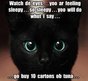 Why hypnotist kitteh is gaining weight.