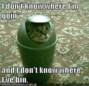 I don't know where I'm goin'  and I don't know where I've bin.