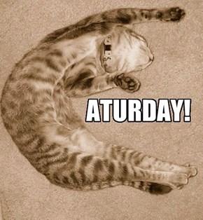 CATURDAY!