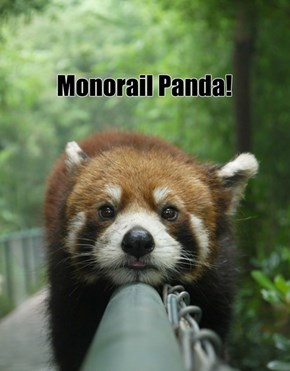 All the Monorail Animals!