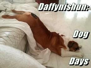 Daffynishun:                                          Dog                                    Days
