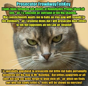 Prosecutor FrowAwayTehKey speaks out on teh Catnip Scandal at KKPS..