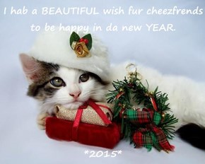 I hab a BEAUTIFUL wish fur cheezfrends to be happy in da new YEAR.  *2015*