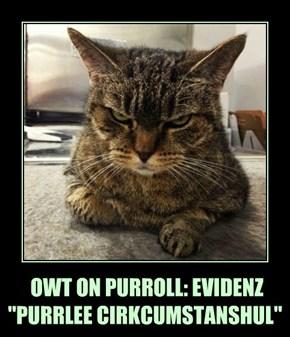 "OWT ON PURROLL: EVIDENZ   ""PURRLEE CIRKCUMSTANSHUL"""