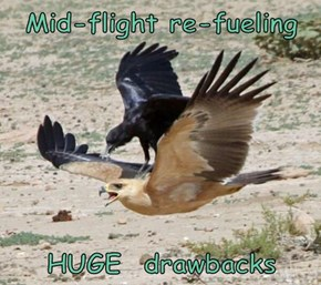 Mid-flight re-fueling  HUGE  drawbacks