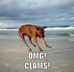 OMG!                                                    CLAMS!