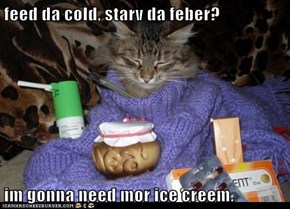 feed da cold, starv da feber?  im gonna need mor ice creem.
