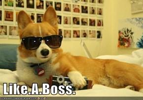 Like.A.Boss.