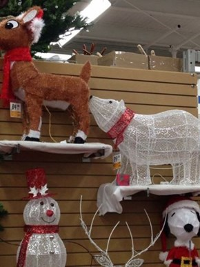 Okay, Who's the Wise Guy Who Did This Display?