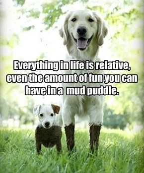 Everything in life is relative, even the amount of fun you can have in a  mud puddle.