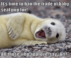 "It's time to ban the trade of baby seal pup fur!  All those who approve, say ""Arf!"""