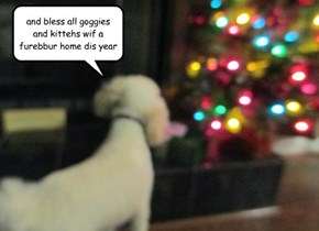 and bless all goggies and kittehs wif a furebbur home dis year