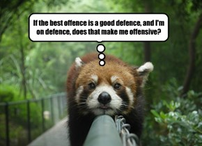 If the best offence is a good defence, and I'm on defence, does that make me offensive?