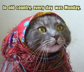 In  old  country,  every  day   was  Monday.
