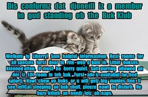 Offishul JeffCatsBookClub Memburship Kard for djoneill