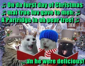 ♫ On da furst day of Christmas ♫ mai true luv gave to meh: ♫ A Partridge in ah pear tree! ♫  ... an he were delicious!
