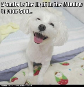 A Smile is the Light in the Window to your Soul..