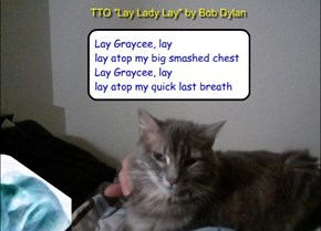 """i can has breathing?"" (TTO ""Lay Lady Lay"" by Bob Dylan)"