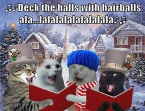 ♫♪Deck the halls with hairballs ala...falalalalalalalala♪♫